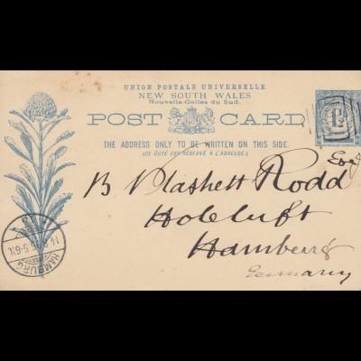 1895: post card NSW to Hamburg