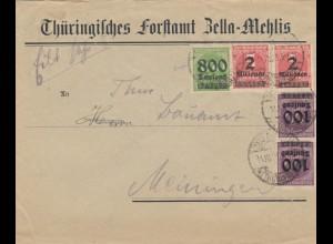 Forstamt Zella Mehlis 1923 nach Meiningen