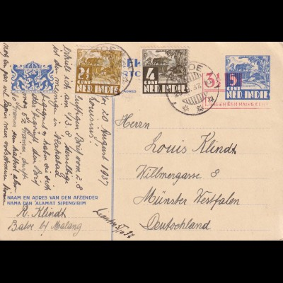 NL-India, post card Malang 1937 to Münster Westfalen