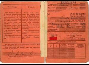 GG: Meldekarte Arbeitsamt Krakau, Büroangestellte 1941,