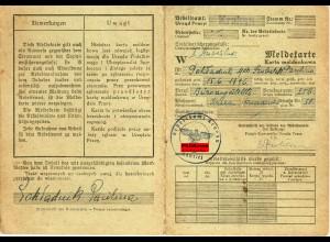 GG: Meldekarte -W- Arbeitsamt Krakau 1941 Büroangestellte