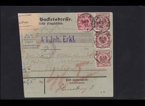 Togo: Vorläufer-Paketkarte Klein-Popo nach Berlin
