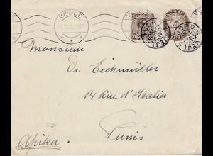 Dänemark: 1924: Ganzsachen Brief von Vejle nach Tunis/Afrika