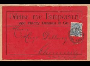 Dänemark: 1926: Päckchenausschnitt nach Chemnitz