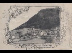 Liechtenstein: Ansichtskarte Triessenberg - Pension Samina