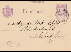 Niederlande: 1880: Briefkaart Ganzsache Borculo/Zutphen