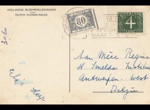 Niederlande: 1957 Ansichtskarte nach Belgien: Dutsch Flowers