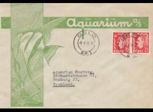 Norwegen: 1951: Osolo nach Hamburg