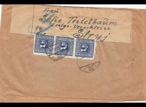 Österreich: 1916: Brief (3-seitig geöffnet) nach Stryj - Zeitungs Verschleiss