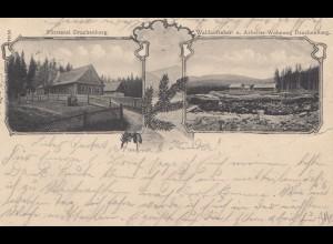 Österreich: 1905: AK Försterei Drachenburg, nach Tangerhütte