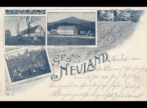 Österreich: 1900: Ansichtskarte Neuland