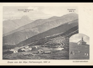 Österreich: 1910: AK Alpe Harlassanger nach Waldheim/Sa