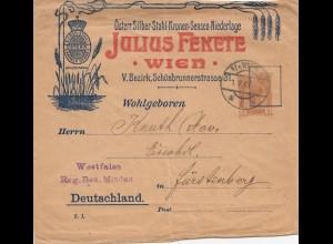 Österreich: 1906: Ganzsache Wien nach Fürstenberg-Silber/Stahl