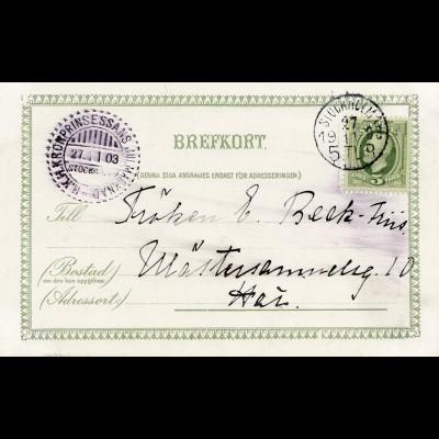 Schweden: 1903: Ansichtskarte Kronprinzessin