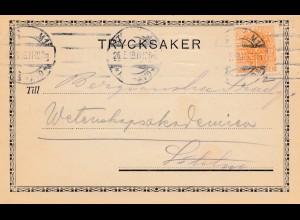 Schweden: 1919: Trycksaker