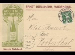 Schweiz: 1913: Wädenswil nach Vorderthal im Kanton Schwyz