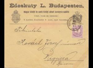 Ungarn: 1889: Brief Budapest nach Ripycza