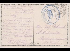 Ungarn: 1917: Ansichtskarte Budapest