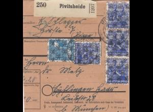 BiZone Paketkarte: Pivitsheide nach Haar