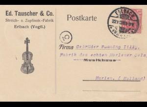 Tauscher Erlbach - Steich- und Zupfinstrumente Fabrik 1920