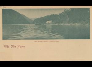 Argentinien: Ganzsache Neujahr, Lago Nahuel Huapi