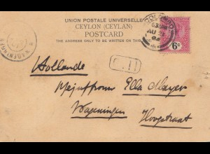 Ceylon: 1905: post card Colombo to Hollande