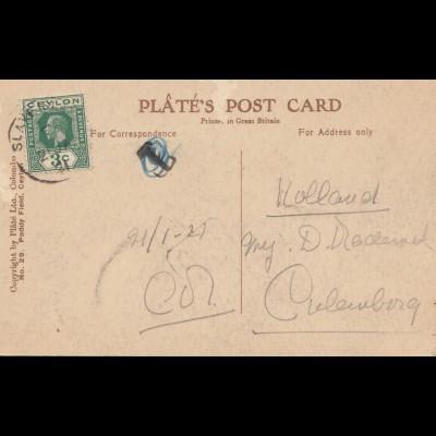Ceylon: 1921: picture post card