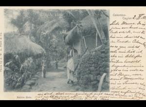 Ceylon: 1901 picture post card Native Huts Maskeliya to Crefeld/Germany