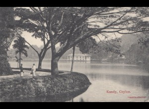 Ceylon: 1909: picture post card Kandy to Freiberg
