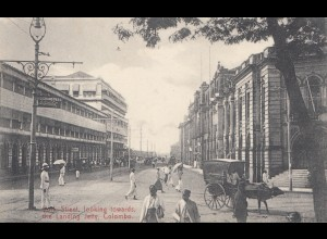 Ceylon: 1908: picture post card Colombo Pork Street to Bückleburg/Germany