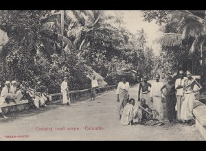 Ceylon: 1909: picture post card Colombo Country Road