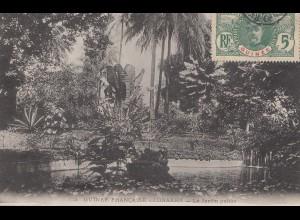 French colonies: Guinee carte postal Conakry Jardain