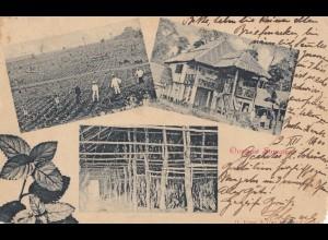 Ned. Indie 1900 Sumatra to Nürnberg/Germany