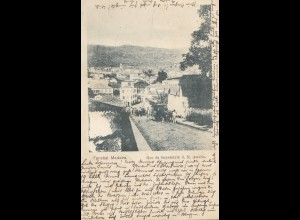 Madeira: 1901: post card Funchal to Weimar