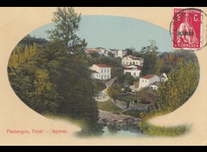 Acores post card Flamengos Fayal to Steinhof