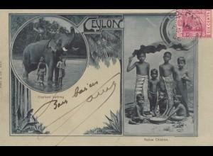 Ceylon 1906: post card Colombo to Paris