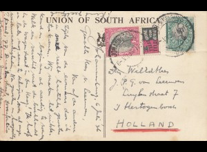 South Africa 1936: post card Transvaal, Hippopotami to Hertogenbosch
