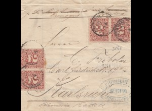 Uruguay 1894: wrapper Montevideo to Karlsruhe