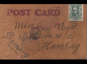 USA 1907: post card leather !!! Letter to Hamburg, Taxe, fishing cat