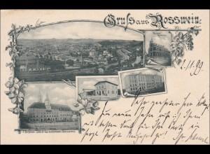 Ansichtskarte AK: Gruss aus Rosswein 1899