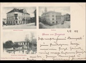 Ansichtskarte AK: Gruss aus Freystadt 1899, Görlitz