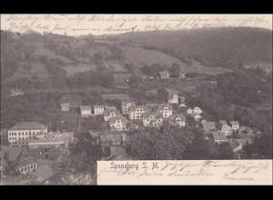 Ansichtskarte AK: Sonneberg S.M. 1905