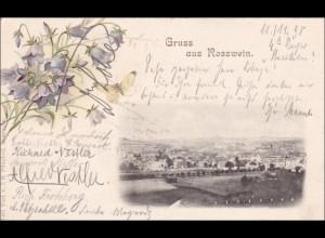 1898 Ansichtskarte AK: Gruss aus Rosswein
