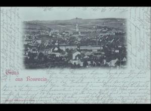 Ansichtskarte Gruss aus Rosswein 1898