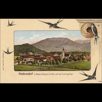 Ansichtskarte AK: Niederaudorf/Kaisergebirge / Schwalben/Vögel