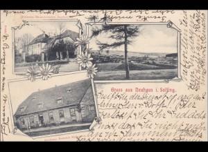 Ansichtskarte AK: Gruss aus Neuhaus i. Solling 1904