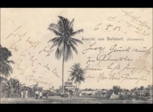 Kamerun: Ansichtskarte von Bellstadt 1903 nach Kiel,Palmen