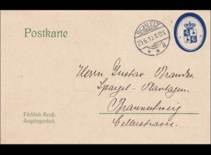 Postkarte Fürstlich Preussische Angelegenheit von Schleiz 1910 nach Braunschweig